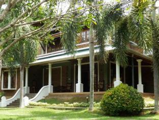 Green Olive Villa