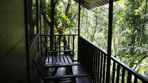 Birds Paradise Hotel