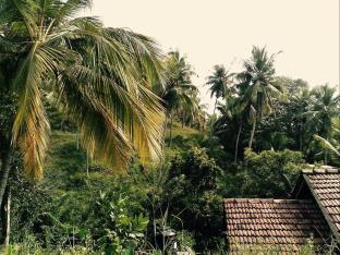 chamika house mirissa