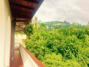 Mount River View