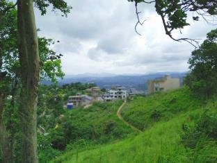 Idyllic Vista