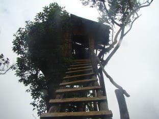 Binara Villa