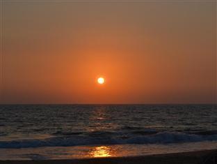 Sea Shine