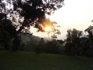 Eco Jungle Hideout Bungalow