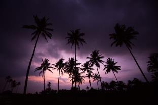 Sri Sharavi Beach Villas and Spa